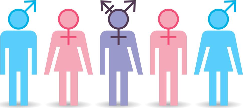 Sexuality and Gender Vocabulary