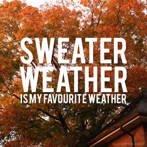 20 Things Girls Who Love Fall Know