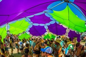 5 Reasons We Can't Wait for Elements Lakewood Festival