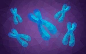 X Chromosome Envy